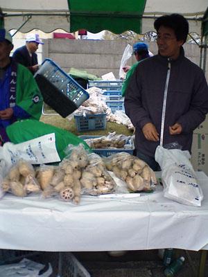 霞ヶ浦マラソン2006年4月16日(日) 「かすみがうらマラソン」初参加  朝から小雨がぱらつく気温11℃の中、2300円なりのホリデーパスを購入し、 上野から常磐線で土浦に向かう。会場では、名産の蓮が格安で売られている。1袋2Kgで700円。 湖岸には、銅像が立っている、 色川三郎兵衛という人で、常磐線の敷設の功労者。 当時、土浦は、霞ヶ浦からの逆流で水害が多発。堤防の必要性が高まっていたが、 町の財政では湖岸を築堤するには負担が大きく、土浦の治水対策は難題であった。 色川三郎兵衛は、日本鉄道株式会社による上野~水戸間の鉄道敷設計画を知り、 土盛りの鉄道路線をもって霞ヶ浦からの逆流防御堤として機能させることを考えついた。 すでに路線計画は土浦町北部の立田付近を通過させることで成立していたが、 色川は霞ヶ浦湖岸に沿うよう町の東側に路線を変更する運動を展開。 その結果、明治28(1895)年、路線変更され現在の常磐線になったという。 北会場は朝早くからごったがえす。   桜がまだ残る。 ゲストランナーは有森裕子  身障者の伴走で参加。  10Km付近の梨畑を走る。  菜の花も満開。   残り4Kmで蓮沼に腰までつかり蓮を取る老婆にであう。   ゴール。  参加賞はTシャツ、蓮粉入りさくらうどん。 肥料入り土、マックポテト引き換え券とリゲイン。  蓮は自費。。。